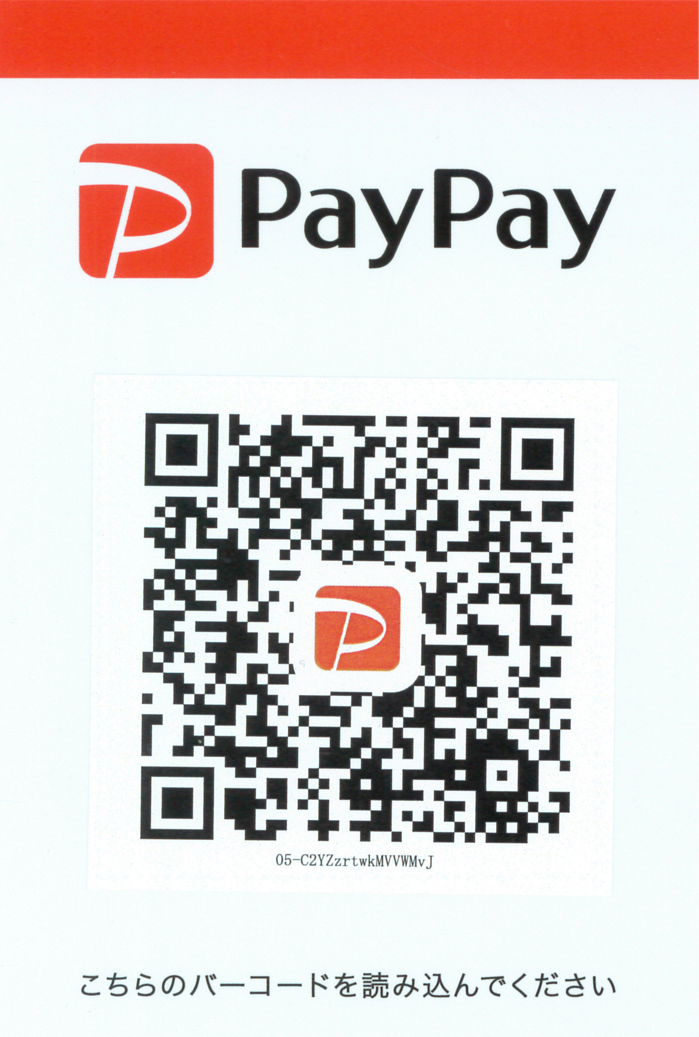 PAYPAY-02